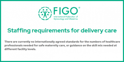 Staffing Requirements for Delivery Care