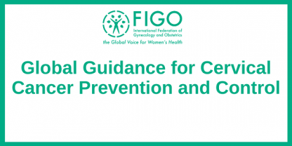 Global Guidance for Cervical Cancer Prevention and Control