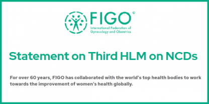 Statement on Third HLM on NCDs