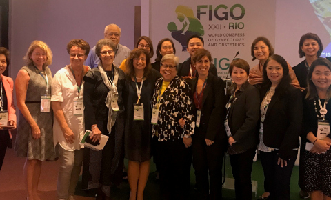 FIGO RDEH committee