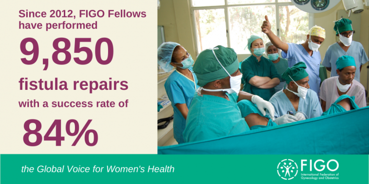 FIGO Fistula Surgery Training Initiative