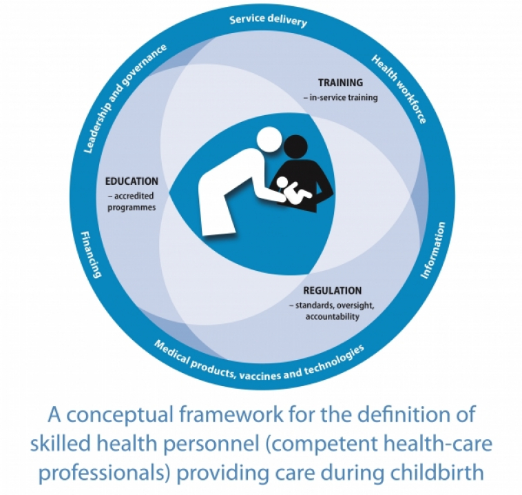 WHO Conceptual Framework on Skilled Health Personnel